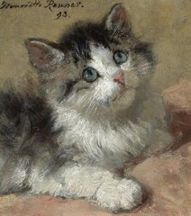 An Inquisitive Kitten, 1893